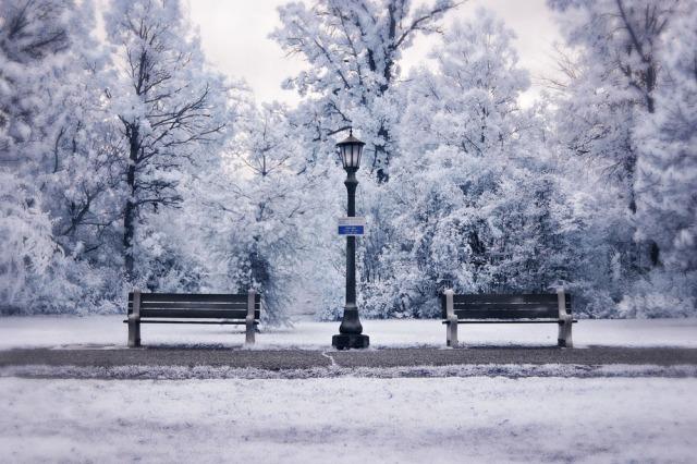 snow_scene_by_archangelical-d2zt3j3